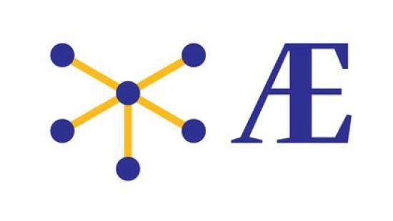 AEDIFICANTES, la société innovante spécialisée dans la fabrication de Pieux vissés